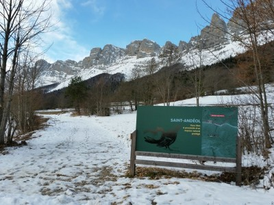 Alpen 1